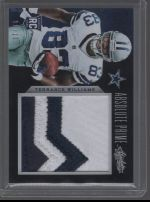 2013 Panini Absolute Terrance Williams